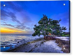 Evening Delight Acrylic Print by Marvin Spates