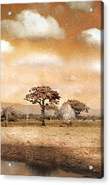Evening Showers Acrylic Print by Holly Kempe