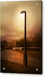 Evening Street Acrylic Print by Svetlana Sewell