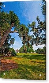 Evergreen Plantation II Acrylic Print by Steve Harrington