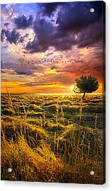 Every Story Has A Beginning Acrylic Print by Phil Koch