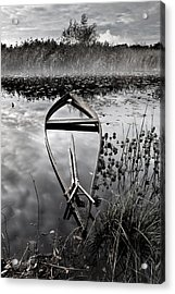 Everything Has Its Time Acrylic Print by Jorge Maia
