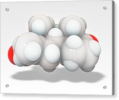 Exemestane Breast Cancer Drug Molecule Acrylic Print by Ramon Andrade 3dciencia