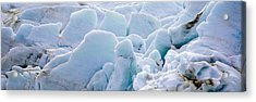 Exit Glacier At Harding Ice Field Acrylic Print by Panoramic Images