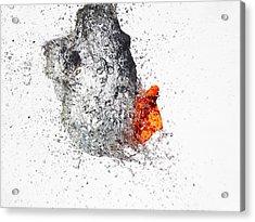 Explosive Water Balloon Acrylic Print by Jay Harrison