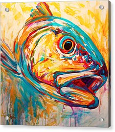 Expressionist Redfish Acrylic Print by Savlen Art