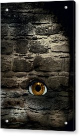 Eye In Brick Wall Acrylic Print by Amanda And Christopher Elwell