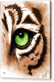 Eye Of The Tiger Acrylic Print by Michelle Eshleman