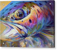 Face Of A Rainbow- Rainbow Trout Portrait Acrylic Print by Savlen Art