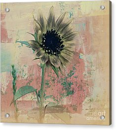 Faded Love Acrylic Print by Janice Westerberg