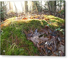 Fairy Mound Acrylic Print by Lynn-Marie Gildersleeve
