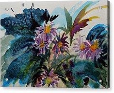 Fairyland Asters Acrylic Print by Beverley Harper Tinsley