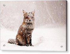 Fairytale Fox _ Red Fox In A Snow Storm Acrylic Print by Roeselien Raimond