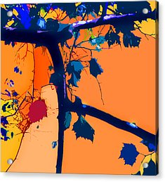 Fall Abstraction 5-2013 Acrylic Print by John Lautermilch