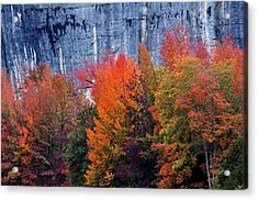Fall At Steele Creek Acrylic Print by Marty Koch