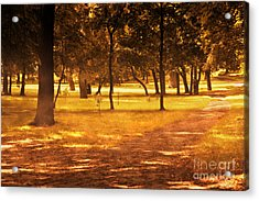 Fall Autumn Park Acrylic Print by Michal Bednarek