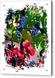 Fall Delight II Acrylic Print by Ken Evans