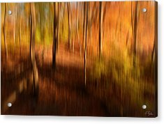 Fall Divine Acrylic Print by Lourry Legarde