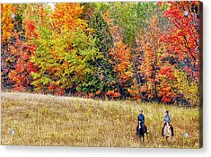 Fall Hack Acrylic Print by Peter Lindsay