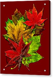 Fall Leafs Art Acrylic Print by Mario Perez