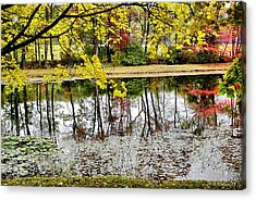 Fall Reflections Acrylic Print by Brian Wallace