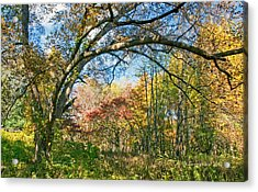 Acrylic Print featuring the photograph Fall Tapestry Of Colors And Textures by A Gurmankin