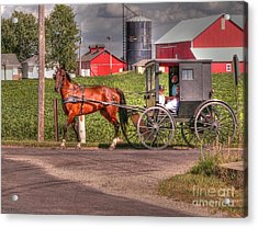 Family Outing Acrylic Print by David Bearden