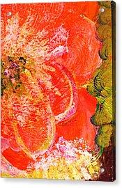 Fantasia With Orange  Acrylic Print by Anne-Elizabeth Whiteway