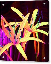 Fantasy Flowers 7 Acrylic Print by Margaret Saheed