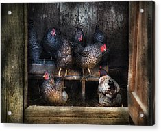 Farm - Chicken - The Hen House Acrylic Print by Mike Savad