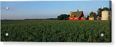 Farm Fields Stelle Il Usa Acrylic Print by Panoramic Images