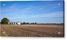 Farming Landscape Acrylic Print by Tom Gowanlock