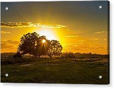 Farmland Sunset Acrylic Print by Marvin Spates