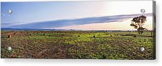 Farms At Sunset, Vale, Butte County Acrylic Print by Panoramic Images