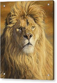 Fearless - Detail Acrylic Print by Lucie Bilodeau