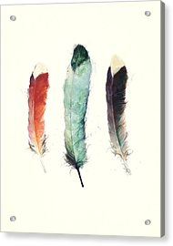 Feathers Acrylic Print by Amy Hamilton