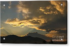 Feathers Of Sunlight Acrylic Print by Charles Kozierok