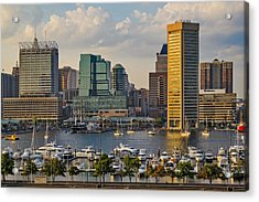 Federal Hill View To The Baltimore Skyline Acrylic Print by Susan Candelario