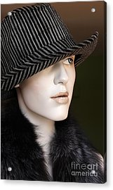 Fedora And Fur Acrylic Print by Sophie Vigneault