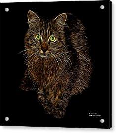 Feral Cat - 9905 F Acrylic Print by James Ahn