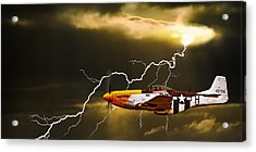 Ferocious Frankie In A Storm Acrylic Print by Meirion Matthias