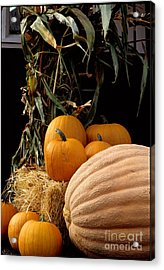 Festive Fall Acrylic Print by Sharon Elliott