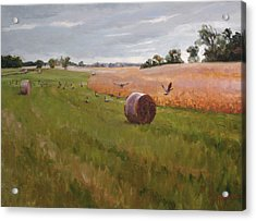 Field Day Acrylic Print by Scott Harding