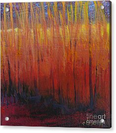 Field Of Dreams Acrylic Print by Melody Cleary