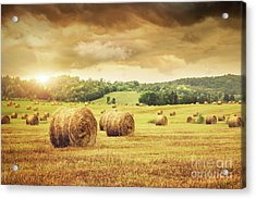 Field Of Freshly Bales Of Hay With Beautiful Sunset Acrylic Print by Sandra Cunningham