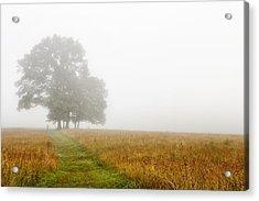 Fields In The Fog Acrylic Print by Andrew Soundarajan