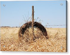 fields That Feed Acrylic Print by JC Photography and Art