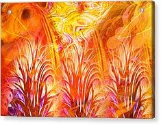 Fiery Fractal Acrylic Print by Lutz Baar