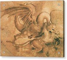 Fight Between A Dragon And A Lion Acrylic Print by Leonardo da Vinci