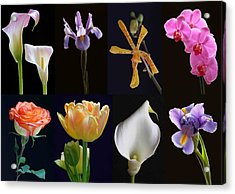 Fine Art Flower Photography Acrylic Print by Juergen Roth